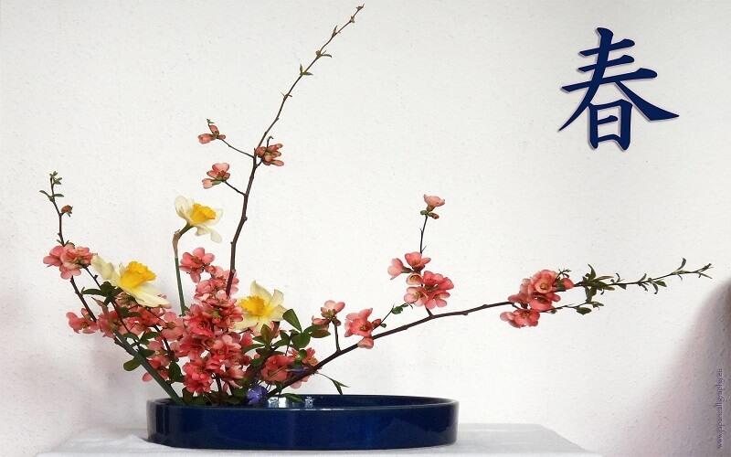 Дни на японската култура